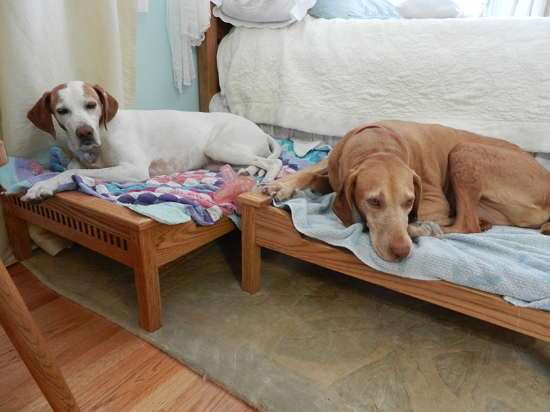 Custom Dog Beds by CC Fine Furniture at CustomMade.com