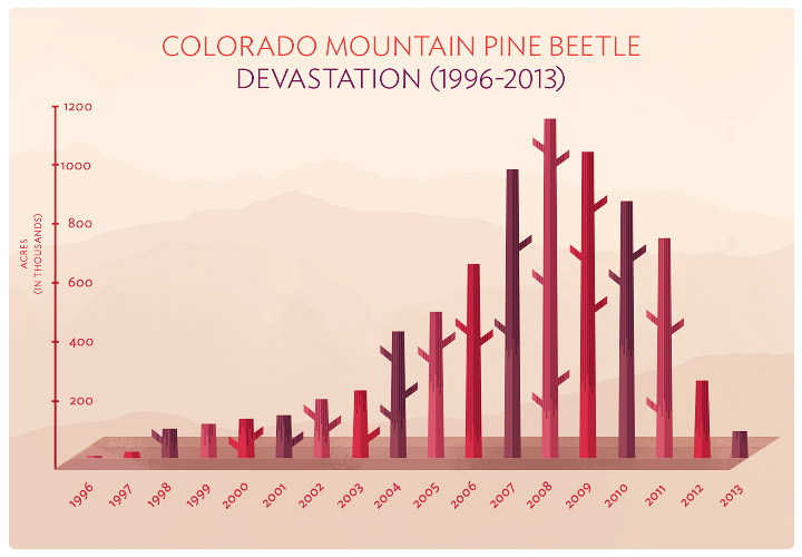 Pine on The Decline - The Devastation by Acres in Colorado