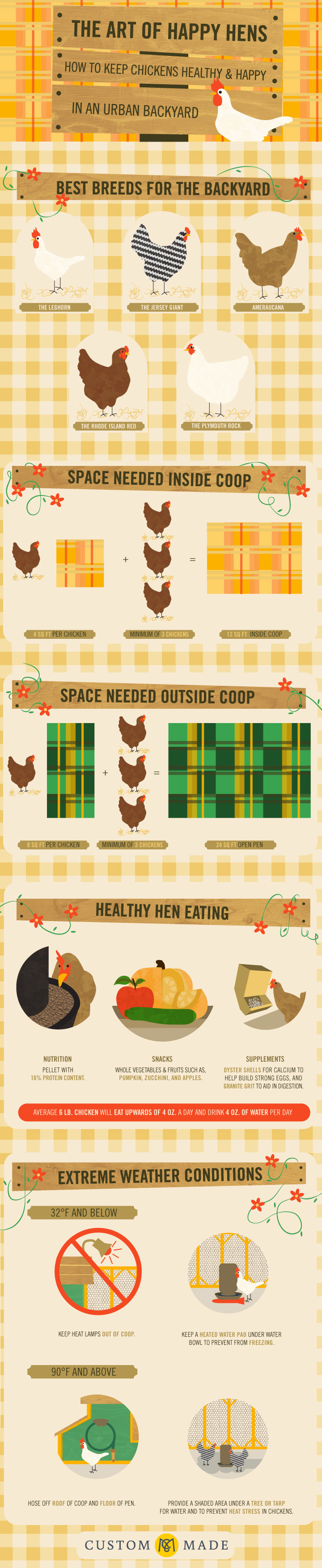 The Art of Happy Hens — How to Keep Chickens Healthy and Happy in An Urban Backyard
