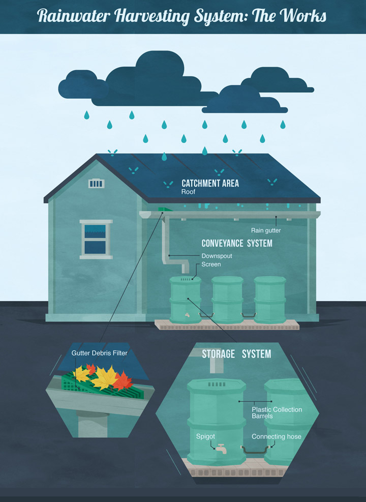 Rainwater Harvesting System: The Works