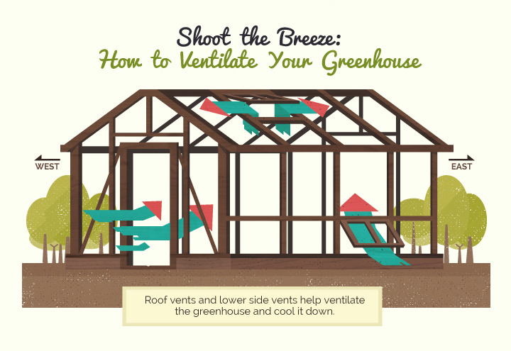 Shoot the Breeze: How to Ventilate Your Greenhouse