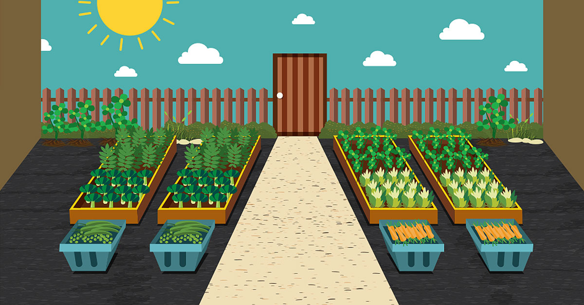 Raise the Roof: How to Plant a Rooftop Garden #gardening