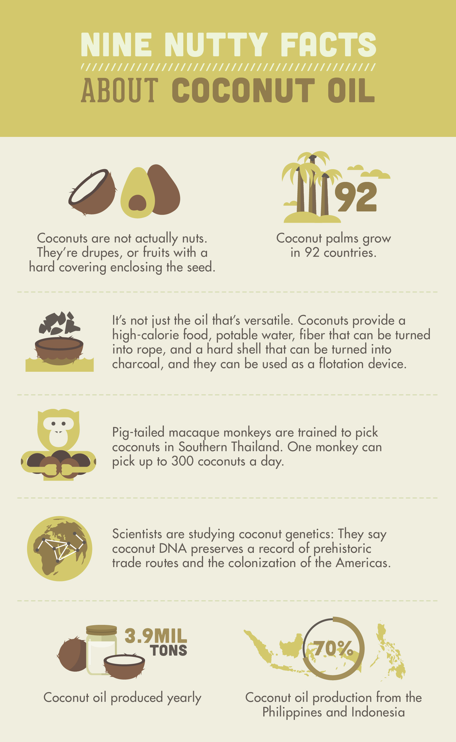 Replace Household Products With Coconut Oil Coconutoil