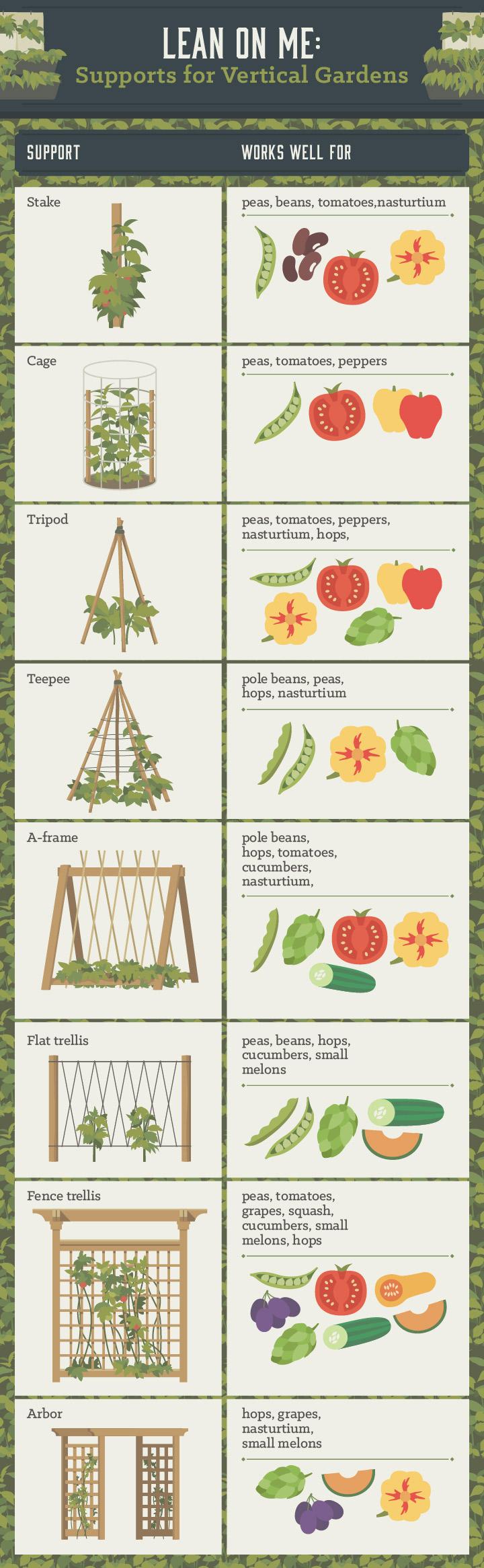 Vertical Gardening Gardening Diy