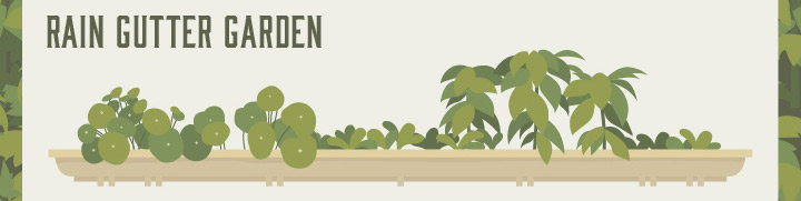 rain gutter garden instructions